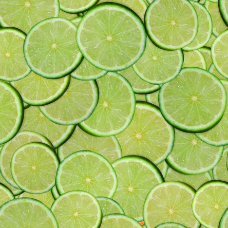 Lime slices small seamless picture