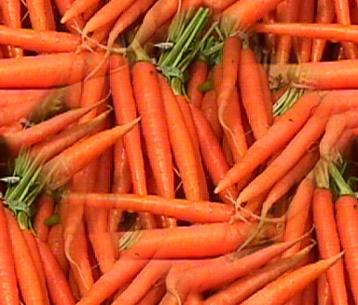 Carrot Carrots Seamless Background Tile