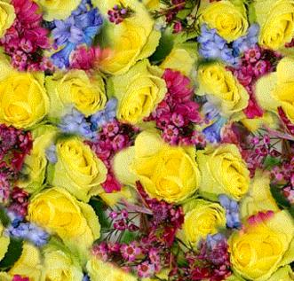 Yellow Roses  Mixed Colors Bouquet Seamless Background Tile