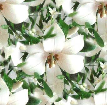 White Lily Single Seamless Background Tile