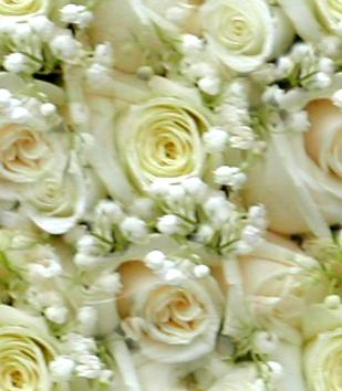 White Roses Wedding Bouquet Seamless Background Tile