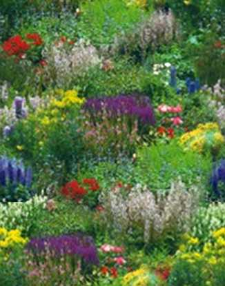 Country Flower Border Garden Seamless Background Tile Image Picture