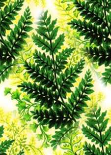 Abstract Fern Seamless Background