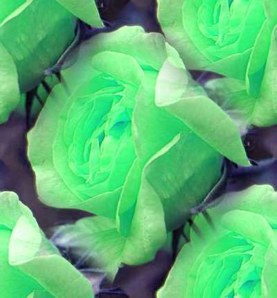Green Rose 2 Seamless Background Tile Image