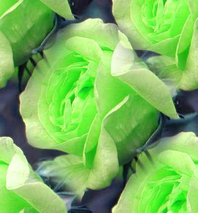 Green Rose 1 Seamless Background Tile