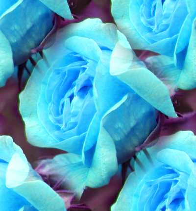 Blue Rose Sky Blue Seamless Background Tile