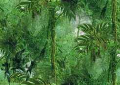 Tropical Rain Forest Small Seamless Background Tile Image Picture