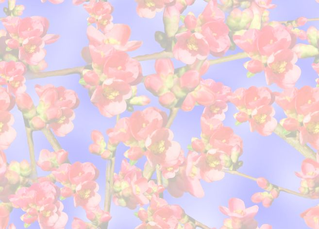 Quince Background Pale Seamless Repeating Background Image