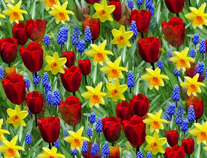 Spring Flowers with Tulips Seamless Repeating Background Image