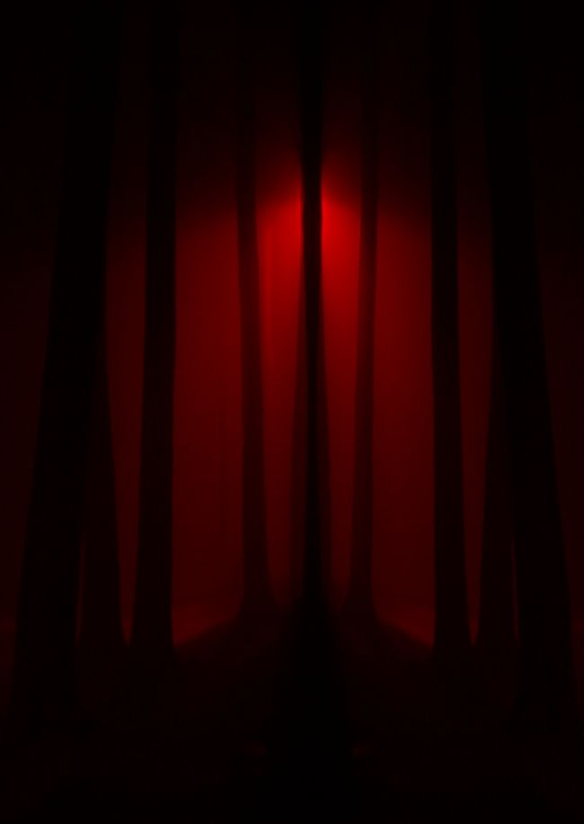 Vampire Background Red Spooky Trees Seamless Repeating Image